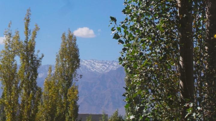 ladakh-s-015
