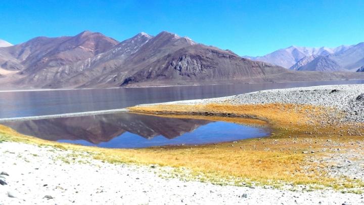 Ladakh-S 140