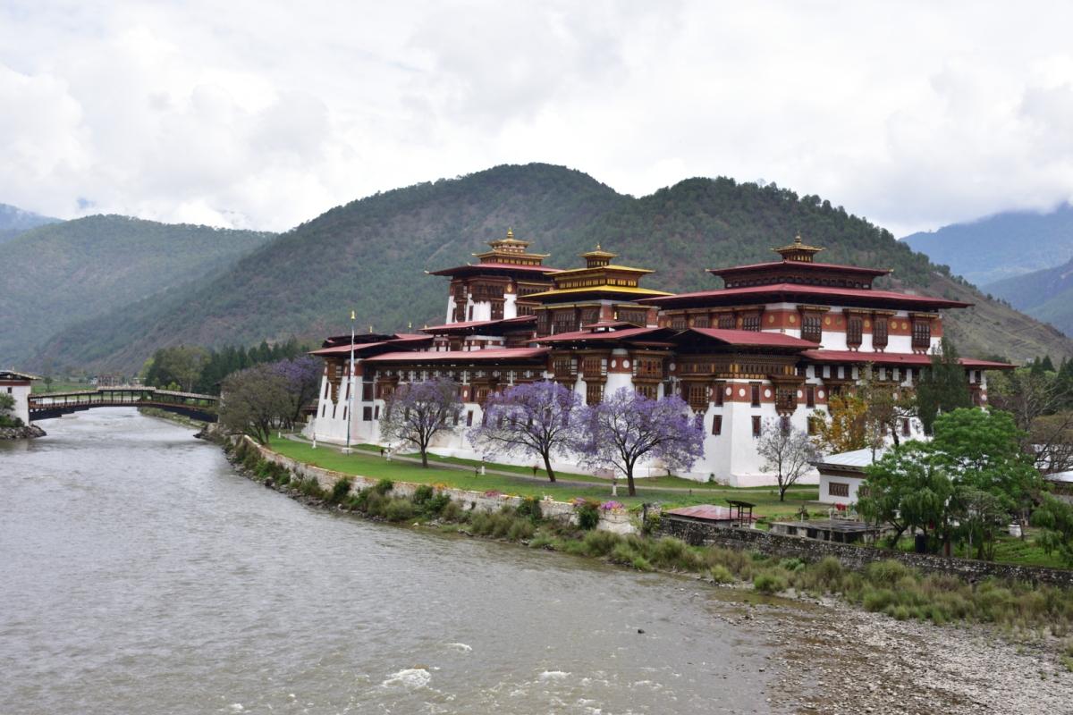 Pungtang Dechen Photrang Dzong - Punakha